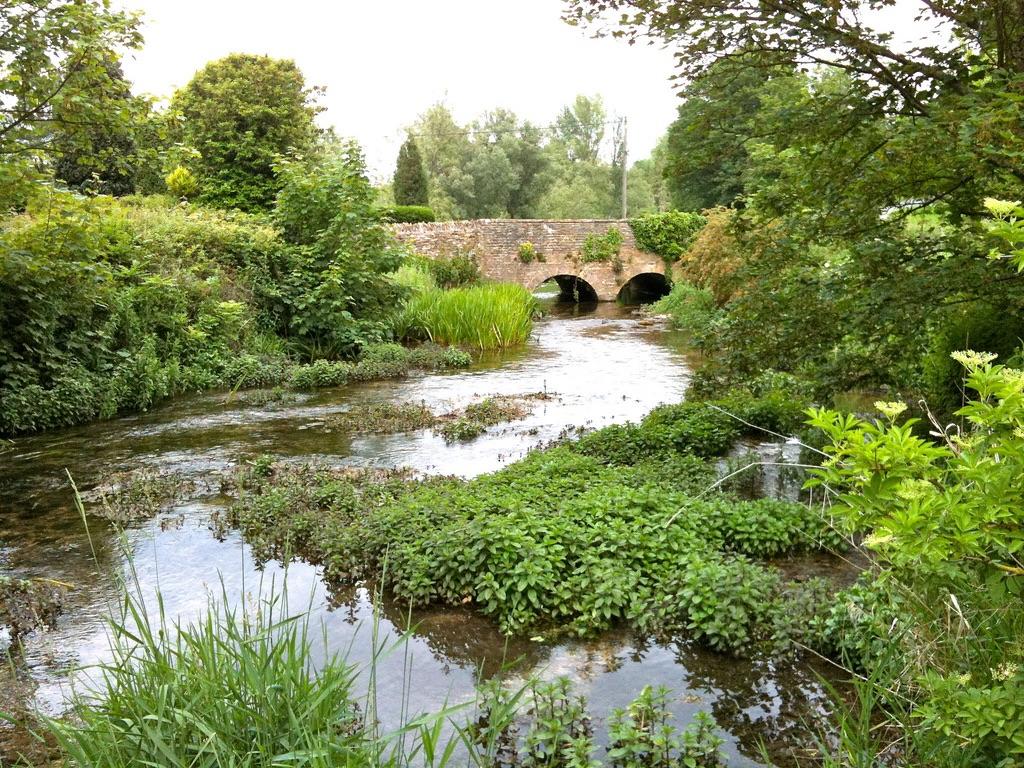 The River Leach