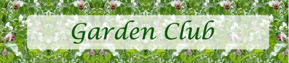 CHEQS Gardening Club